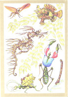 A.M.Sementsov-Ogievski:Bugs, Grasshopper, Fish, Seahorse, 1988 - Other
