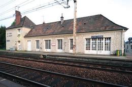 - 61 - Le Thiel La Rouge - Carte Postale Moderne - SNCF - Gare - 6.475 - Altri Comuni
