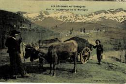 *Types Paysans* - Un Attelage De La Montagne - Cévennes Pittoresques - Wagengespanne