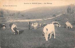 Les Rousses Prémanon ? Pâturage Vaches Berger éd Paget Canton Morez - Sonstige Gemeinden