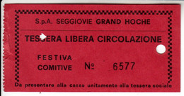 SKIPASS ABBONAMENTO GIORNALIERO SEGGIOVIE GRAND ROCHE - Toegangskaarten