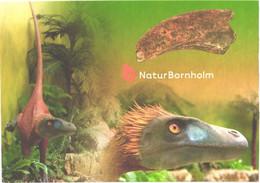 Denmark:Bornholm Nature, Dinosaur, Dromeosaurides Bornholmiensis - Altri