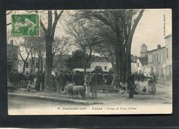 CPA - COZES - Le Champ De Foire D'Hiver - Marché Aux Moutons, Très Animé - Other Municipalities