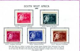 South West Africa MNH 1953 Coronation - Afrique Du Sud-Ouest (1923-1990)
