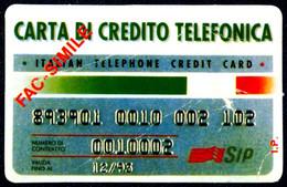 CARTONCINO FAC SIMILE DI CARTA DI CREDITO TELEFONICA SIP 12/93 - Unclassified