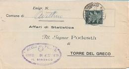 LUOGOTENENZA - PIEGO AMMINISTRATIVO DA AVELLINO A TORRE DEL GRECO CON 25c POSTA AEREA 13.03.1945 - A67 - Marcofilie