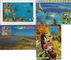 Brazil 2002 Incomplete Series 4 Maximum Card Marine Fauna Animal InvertebrateCoral Reef Ecosystem Fish Seahorse - Vita Acquatica