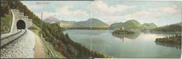Slovenia-----Bled-----old Postcard - Slovenia