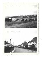 Ottignies NA24: Une Vue Du Buston. Le Quartier Dur Petit-Ry ( Carte 2 Vues ) - Ottignies-Louvain-la-Neuve