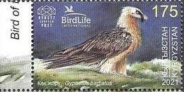 KYRGYZSTAN, 2021, MNH, BIRDS, BIRDLIFE INTERNATIONAL, BEARDED VULTURE,  1v - Eagles & Birds Of Prey