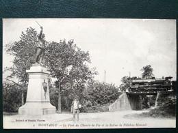 85 , Montaigu ,passage Du Train Pont Du Chemin De Fer En 1919 - Montaigu