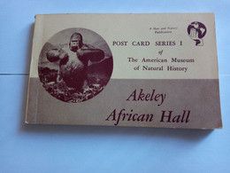 Carnet 16 C Postales The American Museum ( Akeley African Hall ) - Other