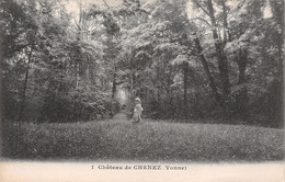 89-MONETEAU CHATEAU DE CHENEZ-N°T1179-F/0009 - Moneteau