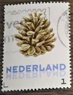 Nederland - NVPH - 3012-Ac7 2e Zegel - Persoonlijke Gebruikt - Bloemen Winter - Eikel - Sellos Privados