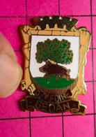 1215B Pin's Pins / Beau Et Rare / THEME : VILLES / FOIRE DE SEDAN SANGLIER BLASON ECUSSON - Cities