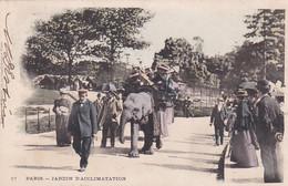 2795111Paris, Jardin D'Acclimation, (1901) - Arrondissement: 05