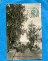 """OUED -ZENATI-Rue Des Petits Soupirs- Beau Plan- Animée*a Voyagé En 1905-""""édition - Other Cities"""