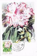41448. Tarjeta Maxima PALLANZA (No) Italia 1983. Flowers, Flores. RODODENDRO - 1981-90: Marcophilia