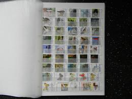 Netherlands : Duplicated Stock Of 'mijn Zegel' , Nice , Please Look !! - Colecciones (en álbumes)