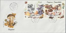 Romania FDC 1994 Mushrooms Souvenir Sheet (LAR10-65) - Mushrooms