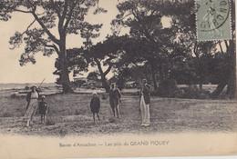 Bassin D'ARCACHON  Les Pins Du Grand Piquey - Arcachon