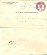 ETATS-UNIS ENTIER 4ème Centenaire De La Découverte De L'Amérique Par COLOMB OMec BUFFALO  20 JUL 1893 3e LIGNE MANQUANTE - ...-1900