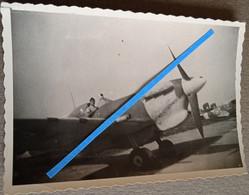 1939 1945 Spitfire Vb Tropical FAFL Chasseur Chasse Aviation Pilote Merlin Tropicalisé France Libre Libé WW2 39-45 Photo - War, Military
