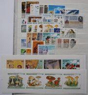 België - Belgique Jaar - Année 1991 ** MNH - Annate Complete