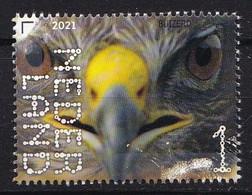 Nederland - Beleef De Natuur - 16 Augustus 2021 - Landgoed Haarzuilens - Buizerd - Buteo Buteo - MNH - Adler & Greifvögel