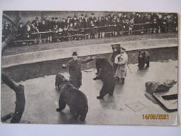 Tschechoslowakei Rotes Kreuz, Bären, Bärenzwinger Ca. 1925 (34418) - Tschechische Republik