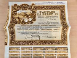 PANTANO  LA  BERNÉ  S.A.  EGEA  DE  LOS  CABALLEROS-------- Obligation  De  500 Pesetas - Wasser