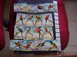Lot Chromos Images Vignettes Oiseaux  -  Birds - Sammelbilderalben & Katalogue