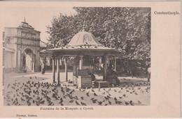 TURKEY - Constantinople -  Fontaine De La Mosquee A Cyoub - Turquie