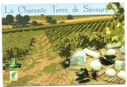 La Charente Terre De Saveurs - Non Classificati