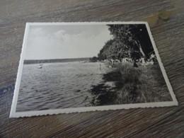 Chimay  Lac De Virelles La Plage Des Bains - Chimay
