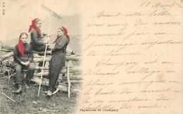 SUISSE PAYSANNES DE CHAMPERY - VS Valais