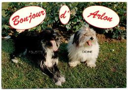 Bonjour D'Arlon - Arlon