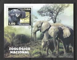 CUBA  2008 BLOC ELEPHANTS YVERT N°242  NEUF MNH** - Altri