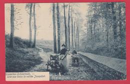 Schaerbeek - Une Vue De La Vallée Josaphat - Attelages Tiré Un Chien / Honderkaar ( Voir Verso ) - Schaerbeek - Schaarbeek