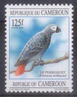 8 B124 Cameroun 1995 Birds Oiseaux Aves 1v Mnh Nsc - Sin Clasificación