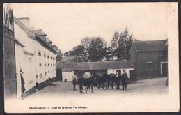 +++ CPA - GHISLENGHIEN - Ath - Cour De La Ferme Portelange - Chevaux   // - Ath