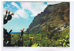 ESPAGNE - CANARY ISLANDS - LA GOMERA - Gomera