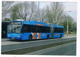 BUS-31   BERKHOF Trollybus At Arnhem - Buses & Coaches