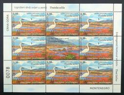 2021 Europe - Endangered Wildlife In The Country, Tivat Saltworks, Birds, Montenegro, MNH - Montenegro