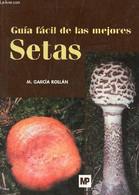Guia Facil De Las Mejores Setas. - Mariano Garcia Rollan - 2004 - Cultural