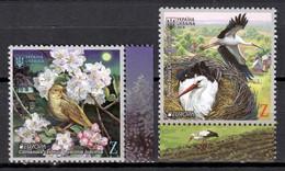 Ukraine 2019 Ucrania / Birds Europa CEPT MNH Aves Vögel Oiseaux Uccelli / Cu18916  23-18 - Unclassified