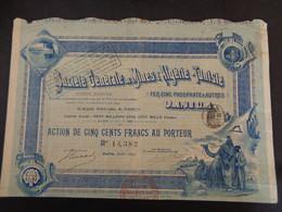 STE DE MINES D'ALGERIE-TUNISIE - FER,ZINC,PHOSPHATES...ACTION DE 500 FRS - PARIS 1899 - ETAT TRES MOYEN - Unclassified