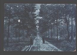 Gierle - Zicht In Het Bosch - Uitg. A. De Peuter - Lille