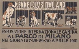 Pubblicitarie - Kennele Club Italiano - Milano 1901 - F. Piccolo - Nuova - Molto Bella - Firmata Laskoff - Pubblicitari