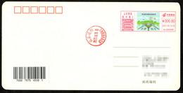 China Qingdao Postage Machine Meter On Postcard: Qingdao Jiaodong International Airport Opened - Briefe U. Dokumente